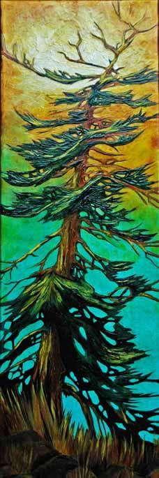 Fir tree_dLangevinWorkshop