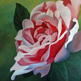 """""""Pink Rose"""" 4' x 4' Acrylic on canvas"""