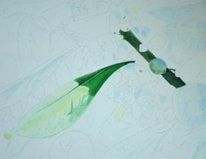 Mistletoe_1_2161_72dpi