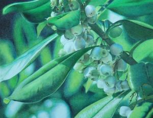 Mistletoe_Final72dpi