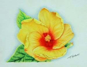 Yellow_Flower_Final