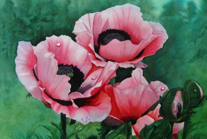 """Pink Poppies"" 11 x 14 Watercolor on Arches"