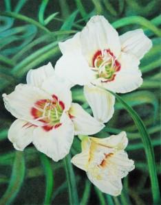 White Daylilies_6