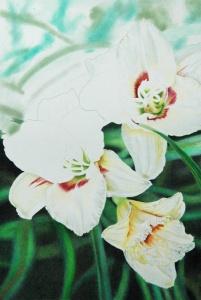 White Lilies_4