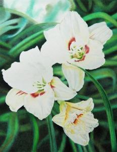 White Lilies_5