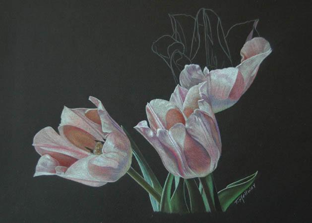 Tulip Trio_3